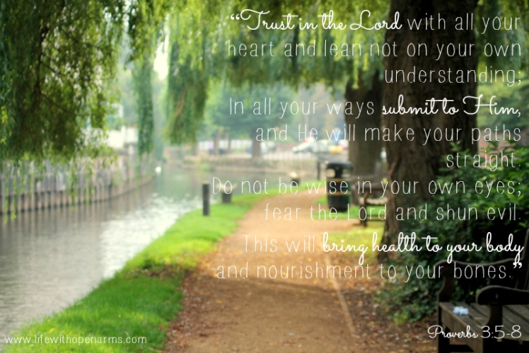 Proverbs 3:5-8