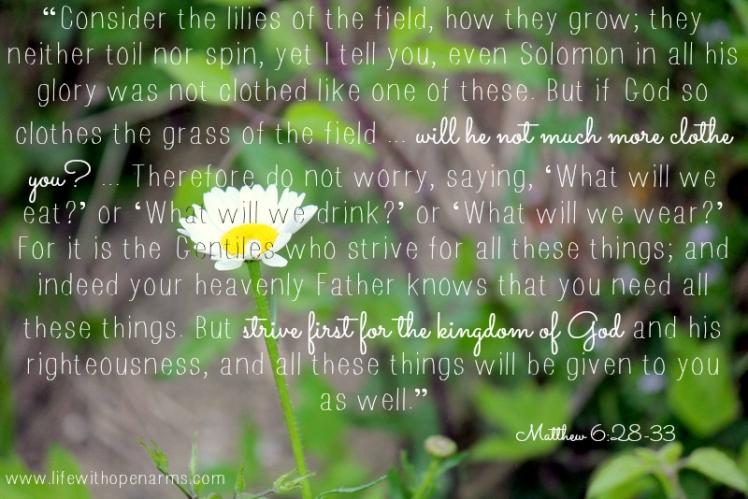 Matthew 6:28-33